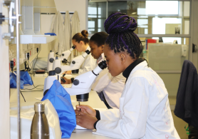 Student training at the University of Western Cape, South Africa.