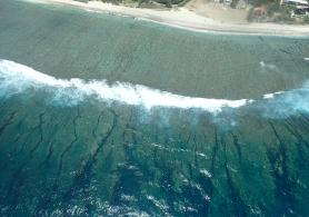 Coral barrier, Reunion Island.