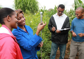 Students of the Unviersity of KwaZulu-Natal, in South Africa, measuring the soil density, one of the variables used to know the carbon stocks.