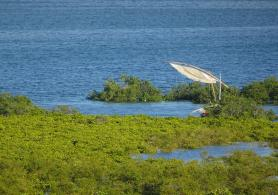 Landscape on the Mozambican coast.