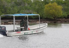"The ""Nyota ya Mikoko"", or ""star of the mangrove"", vessel dedicated to mangrove conservation."