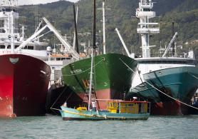 In Seychelles, artisanal and industrial fisheries coexist.